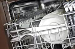 Dishwasher Technician Cortlandt